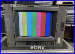 Sony Trinitron Video Monitor PVM-1341 Gaming Monitor Studio Grade TESTED TV